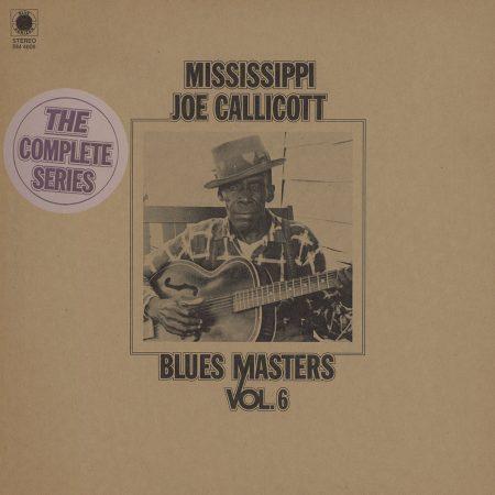 Mississippi Joe Callicott Vol. 6